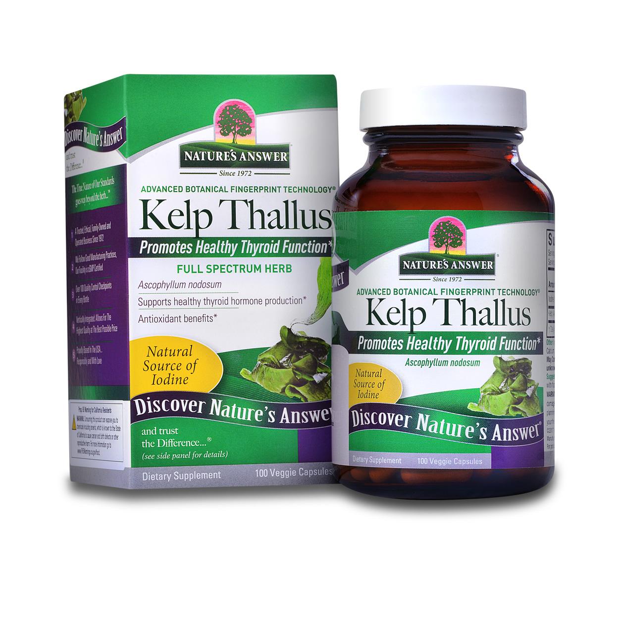 Kelp Thallus