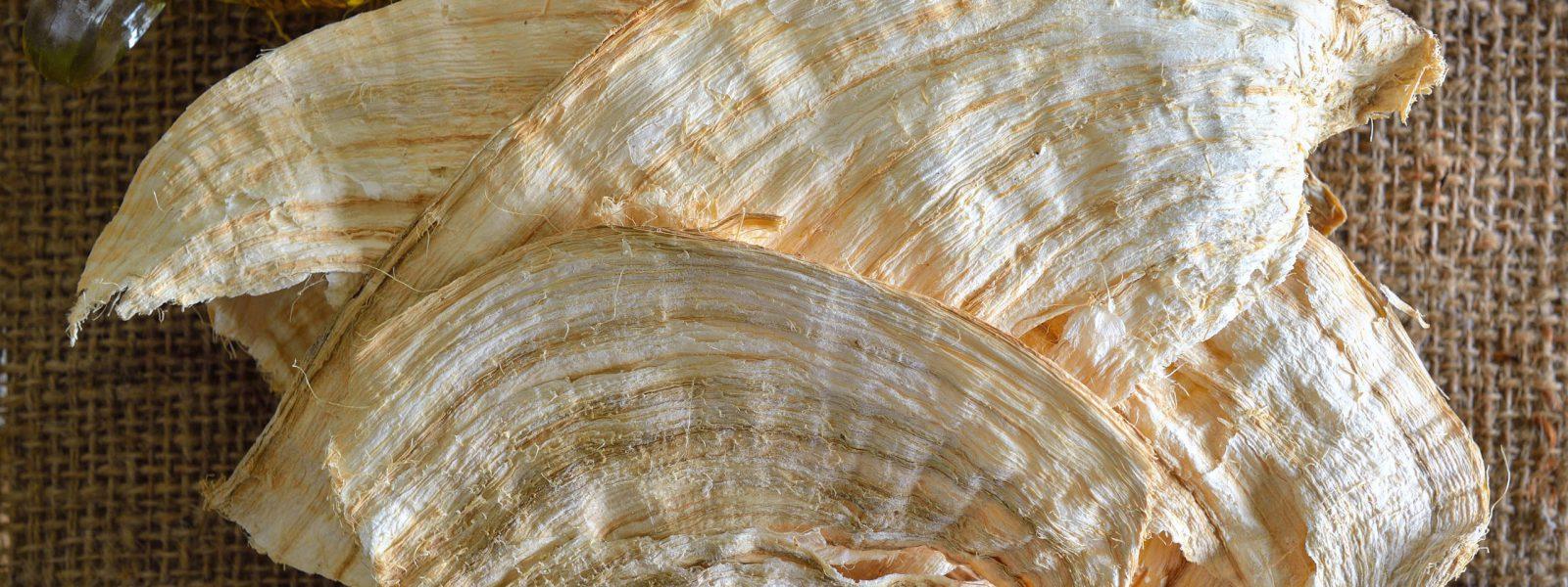 Pueraria mirifica or White Kwao Krua
